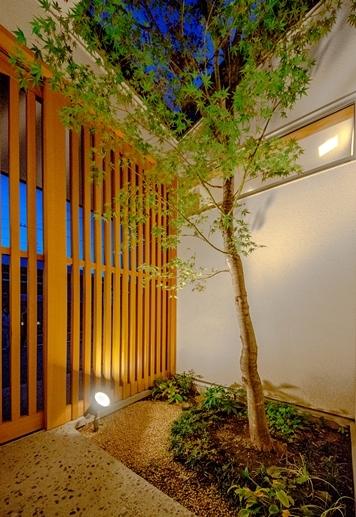 二つの木の家